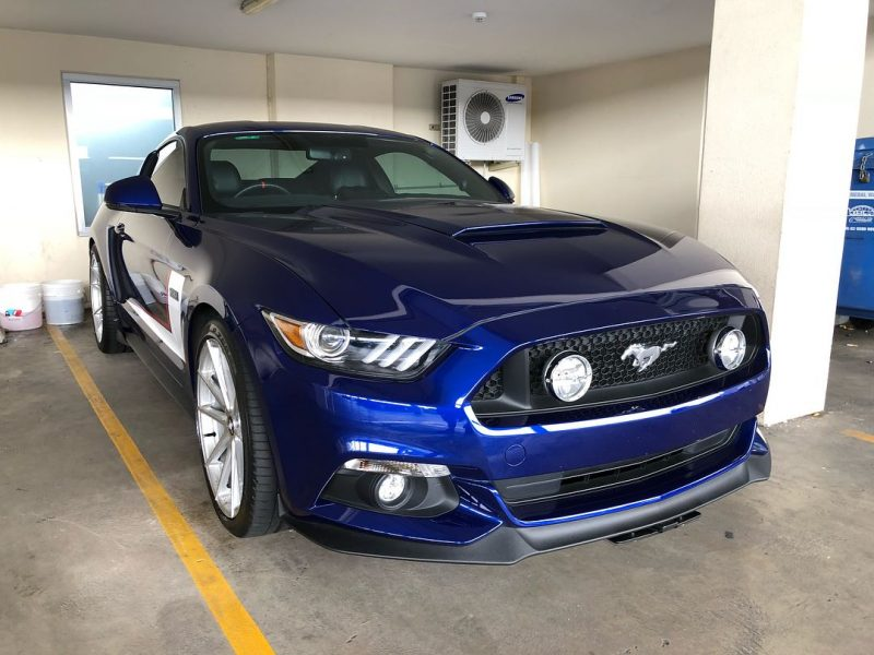 xpel ultimate paint protection film XPEL ULTIMATE Paint Protection Film Mustang GT BLue XPEL Application 800x600
